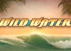 Wild Water video slot machine